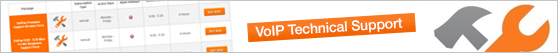 voip-support-small