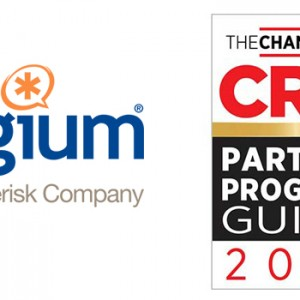 digium-crn-partner-program-guide-2017